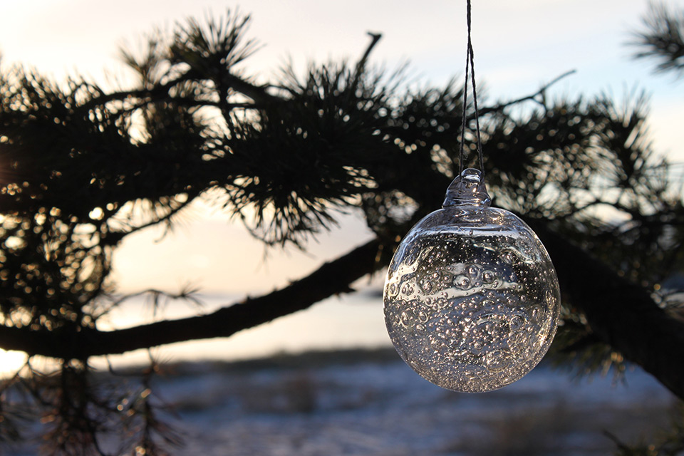 Hyvää joulua! Merry xmas!