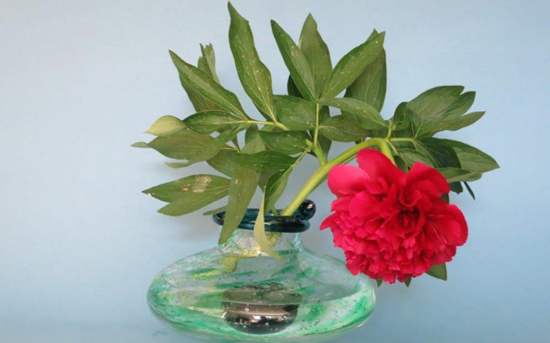 Ikebana-asetelmia lasimaljakoissa