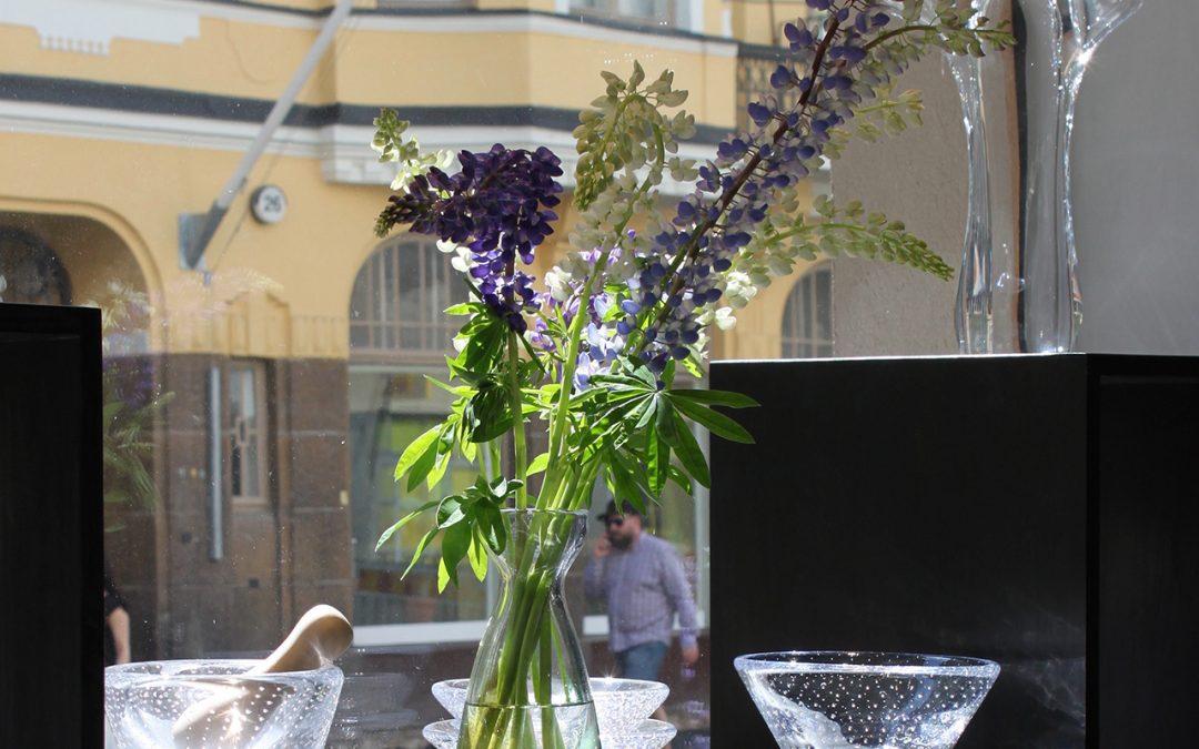 Gallerian & lasistudion loma-ajat